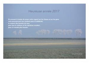 CV 2017-1 - copie